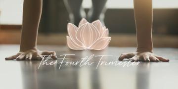 Pregnancy & Postpartum Care: The Fourth Trimester